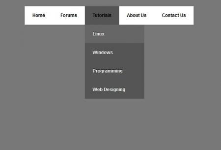 Simple CSS Drop Down Menu